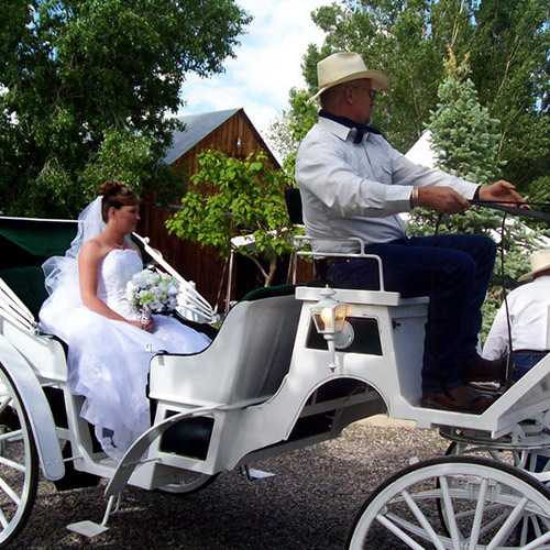 bride riding a carriage to her wedding at Amy's Courtyard in Palisade Colorado